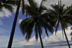 14 playa suital 3
